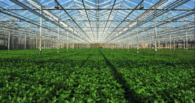 BANDO ISI INAIL 2016: Nuovi contributi a fondo perduto per le imprese agricole